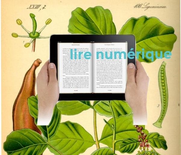 lirenumerique_lire_numerique.jpg