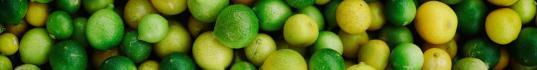 image citron.jpg (0.2MB)